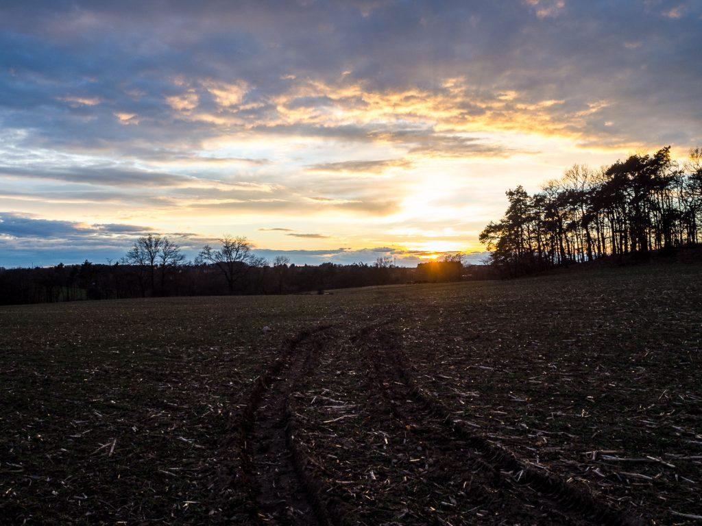 Sonnenuntergang OOC